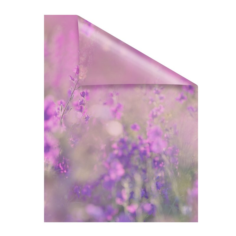 Fensterfolie selbstklebend