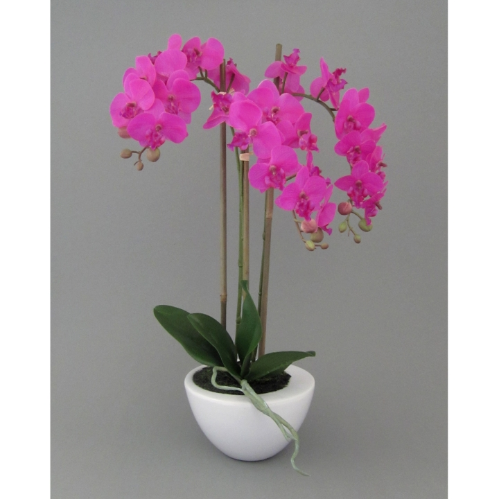 kunstpflanze mini phalenopsis orchidee farbe pink im wei en keramik topf h ebay. Black Bedroom Furniture Sets. Home Design Ideas