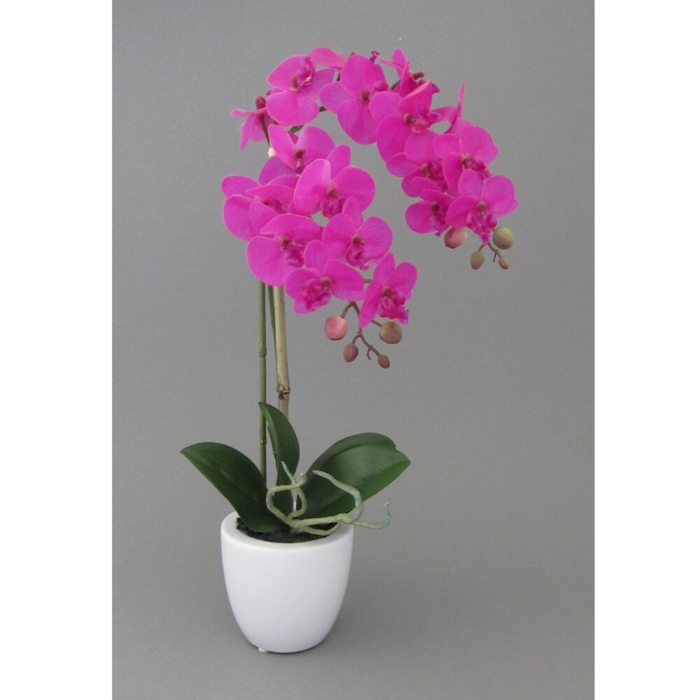 kunstpflanze miniphalenopsis pink h he 43 cm. Black Bedroom Furniture Sets. Home Design Ideas