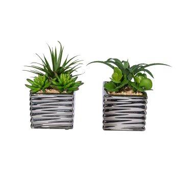 Kunstpflanzen Sukkulenten-Arrangement 2er Set, im...