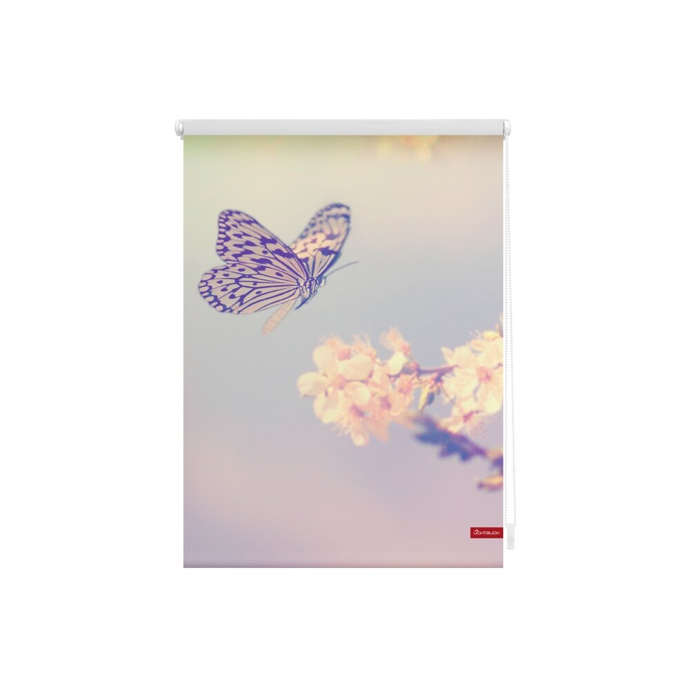 Erfreut Buchstabe B Schmetterling Färbung Seite Zeitgenössisch ...