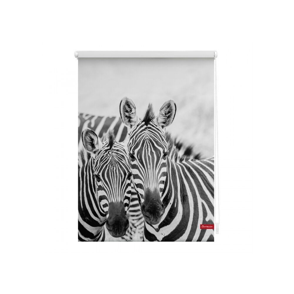 rollo seitenzugrollo zebra wei schwarz kaufen. Black Bedroom Furniture Sets. Home Design Ideas
