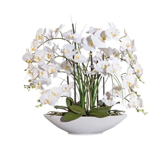 kunstpflanze phalenopsis wei h he ca 70 cm. Black Bedroom Furniture Sets. Home Design Ideas