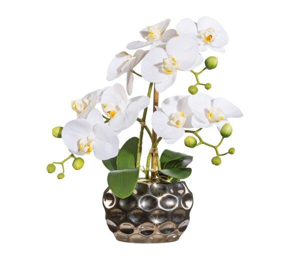 kunstpflanze phalenopsis wei 100 cm mit schale. Black Bedroom Furniture Sets. Home Design Ideas