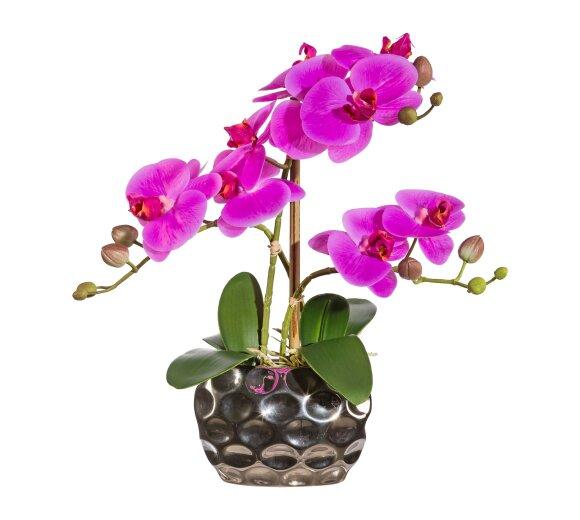 kunstpflanze phalenopsis lila 50 cm mit vase. Black Bedroom Furniture Sets. Home Design Ideas