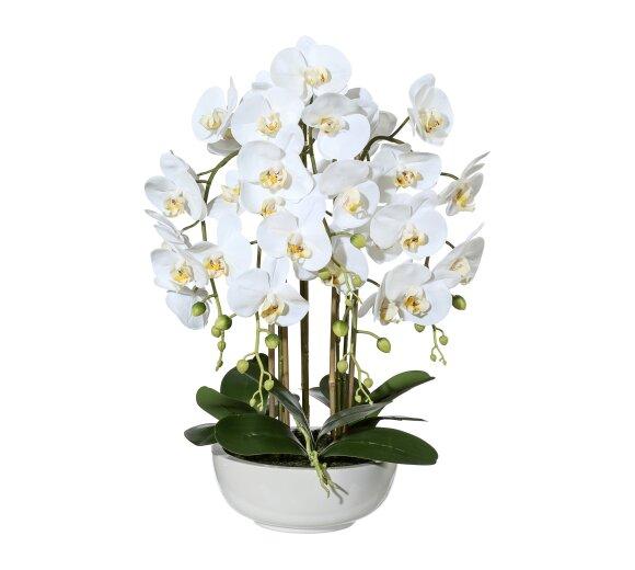 kunstpflanze orchideen bambus arrangement wei. Black Bedroom Furniture Sets. Home Design Ideas