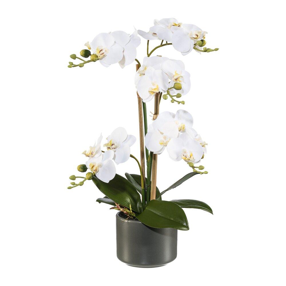 kunstpflanze phalenopsis wei h he ca 38 cm. Black Bedroom Furniture Sets. Home Design Ideas