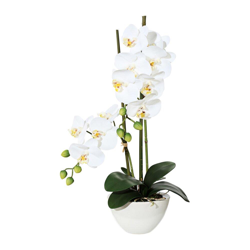 kunstpflanze phalenopsis wei 50 cm mit schale. Black Bedroom Furniture Sets. Home Design Ideas