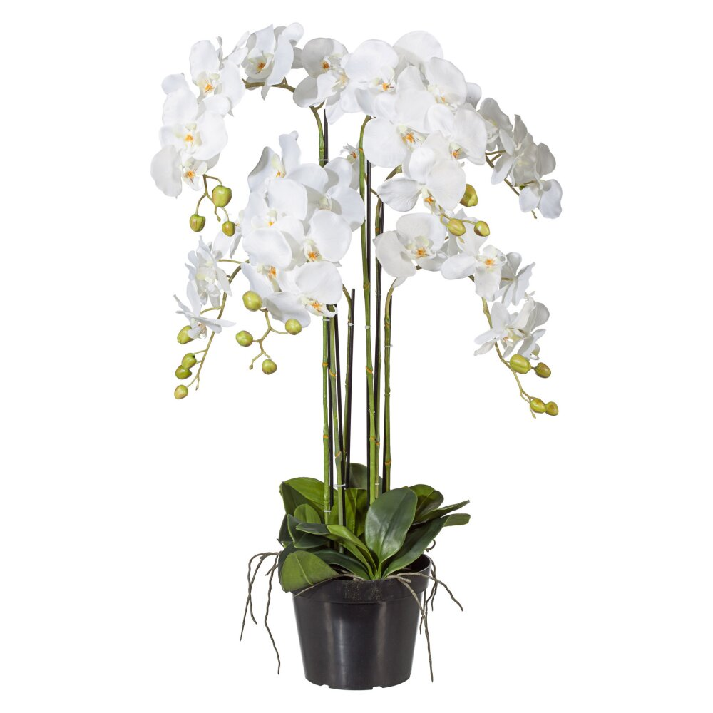 kunstpflanze phalenopsis wei 90 cm inkl topf. Black Bedroom Furniture Sets. Home Design Ideas