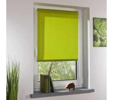 LIEDECO Klemmfix-Rollo Lichtdurchlässig 080 x 150cm Fb. grün inkl. Klemmträger