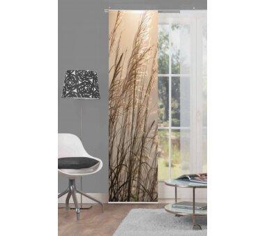 Schiebevorhang Deko blickdicht SUSANNA Größe BxH 60x245 cm, natur