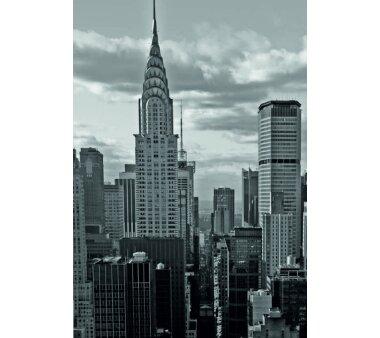 Schiebevorhang Deko blickdicht NEW YORK Fb....