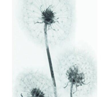Schiebevorhang Deko blickdicht FREIBURG Fb. schwarz-weiß Größe BxH 60x245 cm
