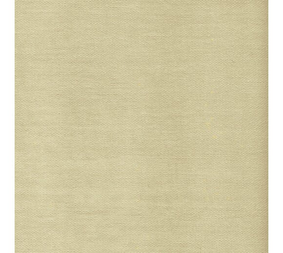 schiebevorhang set 3 schiene dalina lemon gr n 160 cm. Black Bedroom Furniture Sets. Home Design Ideas