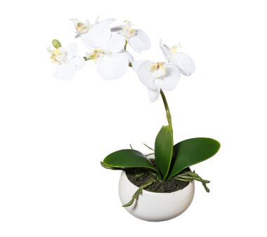 Kunstpflanze Phalenopsis (Orchidee), Farbe weiß,...