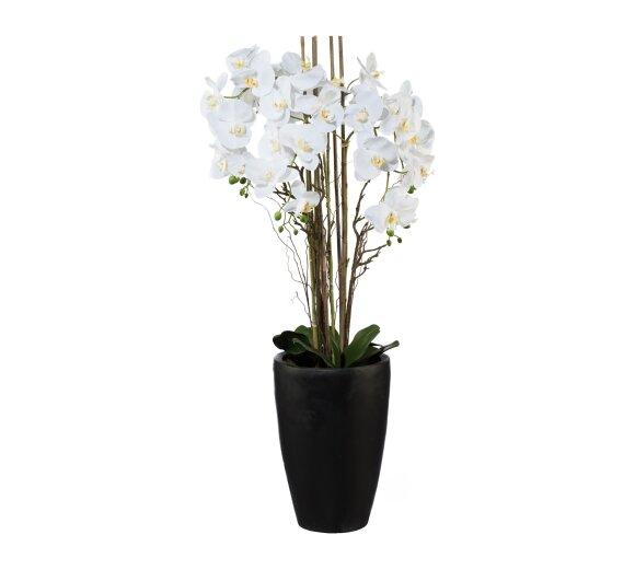 Kunstpflanze orchideen arrangement wei wohnfuehlidee - Orchideen arrangement ...