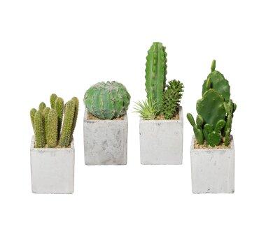 Kunstpflanzen Kakteen-Mix 4er Set, im Zement-Topf,...