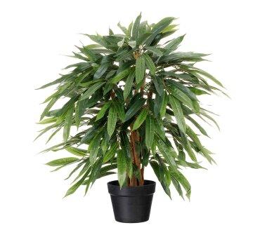 Kunstpflanze Weeping-Ficus, Farbe grün, Inklusive...