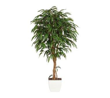 Kunstpflanze Weeping-Ficus grün, mit Naturstamm,  im...