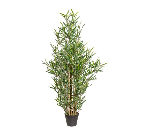 Kunstpflanze Bambus 120 Cm Kaufen Bei Wohnfuehlidee