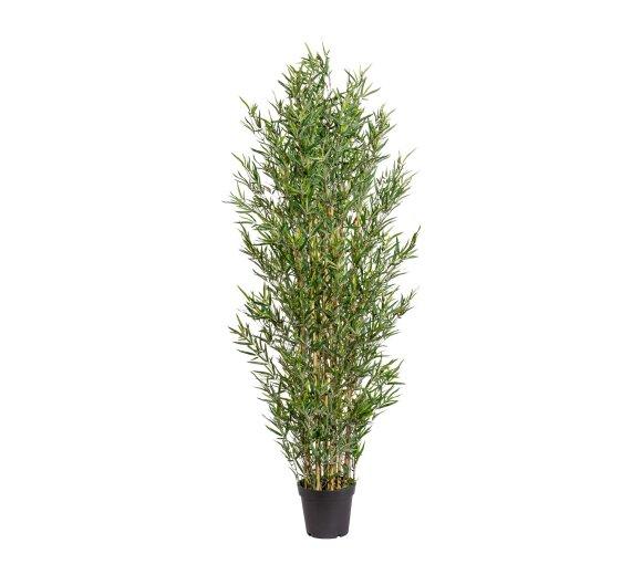 Kunstpflanze Bambus 180 Cm Kaufen Bei Wohnfuehlidee