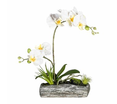 Kunstpflanze Orchideen-Arrangement, Farbe creme, mit...
