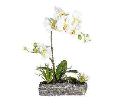 Kunstpflanze Orchideen-Arrangement, Farbe hellgrün,...
