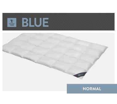 SPESSARTTRAUM Daunen-Cassettendecke BLUE mit 2 cm...
