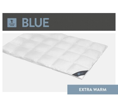 SPESSARTTRAUM Daunen-Cassettendecke BLUE mit 4 cm Innen-...