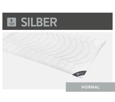 SPESSARTTRAUM Faser-Duodecke SILBER Wärmegrad normal