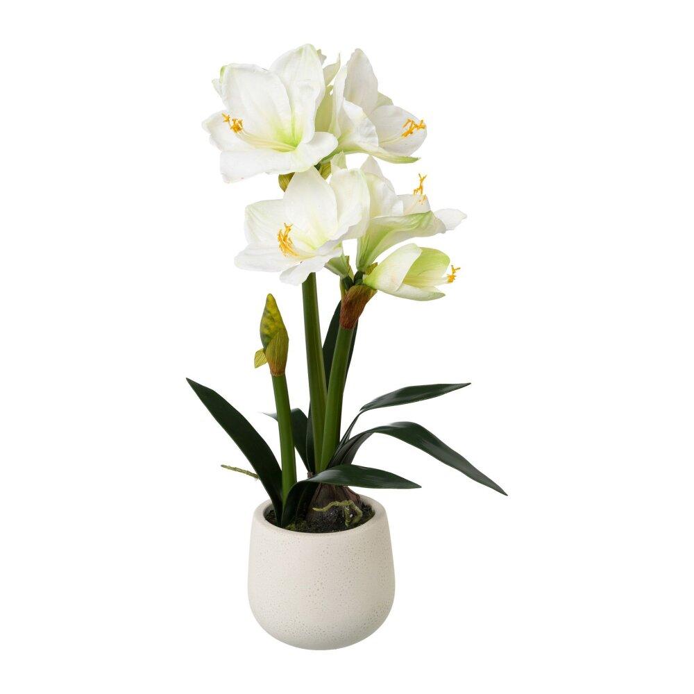 Kunstpflanze Amaryllis dunkelrot im Keramiktopf weiss ca 35 cm