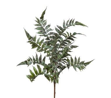 Kunstpflanze Pterisfarn, 2er Set, Farbe grün,...