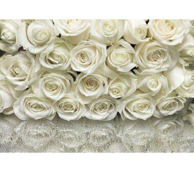 Fototapete SUNNY DECOR, A LA ROSE, 8 Teile, BxH 368 x 254 cm