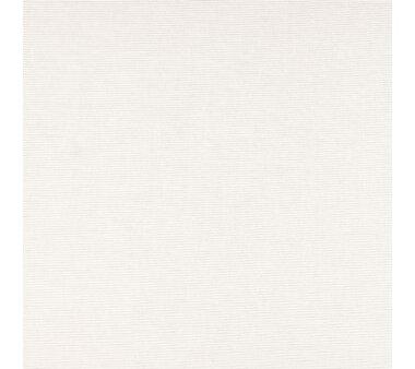 LIEDECO Seitenzugrollo Dekor Natur  060 x 180 cm Fb. beige
