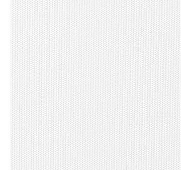 LIEDECO Seitenzugrollo Uni-Tageslicht 062 x 180 cm Fb. weiß