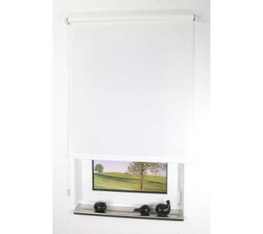 LIEDECO Seitenzugrollo Uni-Tageslicht 102 x 180 cm Fb....