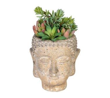 Kunstpflanze Sukkulentenarrangement grün-rosa, im...