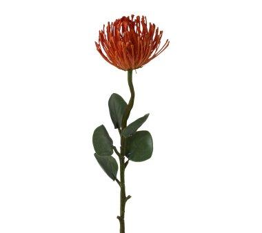 Kunstpflanze Nadelkissenprotea, 2er Set, Farbe orange,...