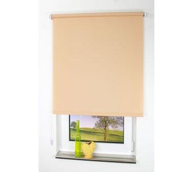 LIEDECO Seitenzugrollo Uni-Tageslicht 102 x 240 cm Fb. sand
