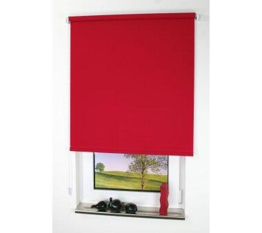 LIEDECO Seitenzugrollo Uni-Tageslicht 122 x 180 cm Fb. rot