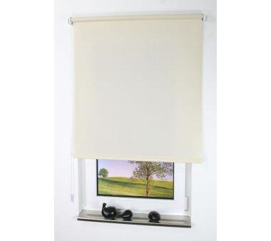 LIEDECO Seitenzugrollo Uni-Tageslicht 142 x 180 cm Fb. cream