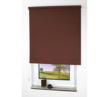 LIEDECO Seitenzugrollo Uni-Tageslicht 162 x 180 cm Fb....