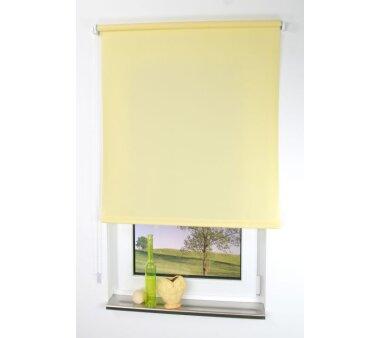 LIEDECO Seitenzugrollo Uni-Tageslicht 182 x 180 cm Fb. gelb