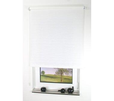 LIEDECO Seitenzugrollo Dekor-Tageslicht 082 x 180 cm  Fb....