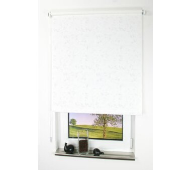 LIEDECO Seitenzugrollo Dekor-Tageslicht 122 x 180 cm  Fb....