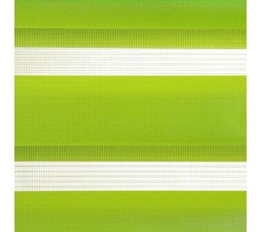 LIEDECO Klemmfix Duo-Rollo mini 120 x 160 cm apfelgrün