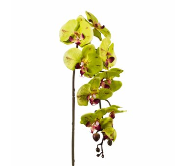 Kunstblume Phalenopsis (Orchidee), 3er Set, Farbe...