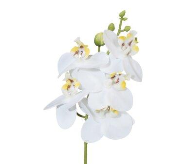 Kunstblume Miniphalenopsis, 5er Set, Farbe weiß,...