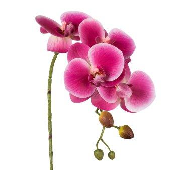 Kunstblume Phalenopsis 3D-Print, 4er Set, Farbe pink,...