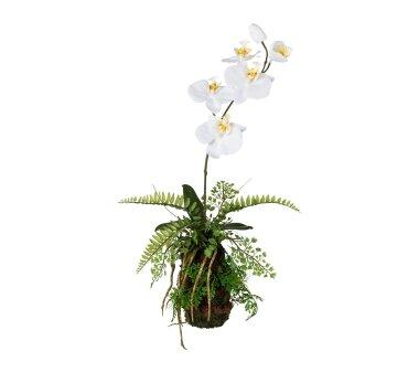Kunstpflanze Orchideen-Farn-Arrangement, Farbe...